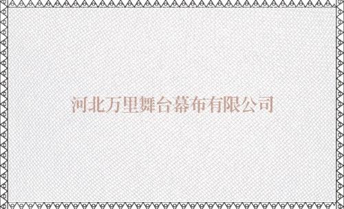 浙江无缝纱幕